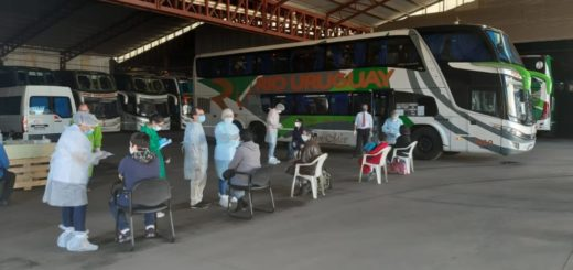 Coronavirus: bajo estrictas medidas de control sanitario, arribó el primer contingente de Misioneros repatriados desde Buenos Aires