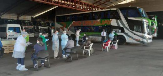 Análisis semanal: Misiones marca el camino de la cuarentena administrada en una economía atravesada por la pandemia