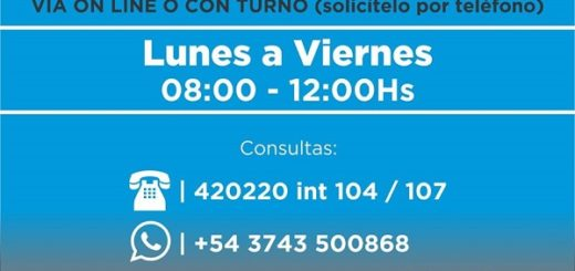 La Municipalidad de Puerto Rico seguirá con el sistema de atención on  line y por turnos