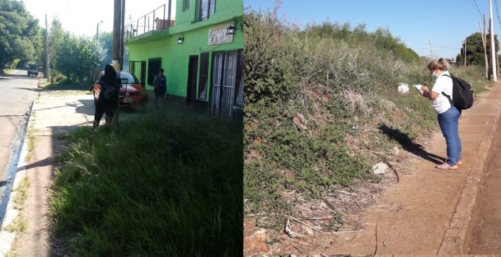 Continúan con los controles de terrenos baldíos y abandonados de la ciudad de Posadas