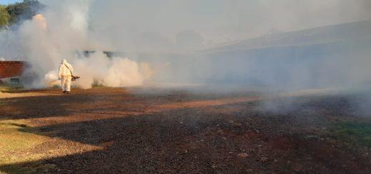 Dengue: se fumigaron organismos públicos, Ferias Francas y continuaron las acciones preventivas en los barrios posadeños