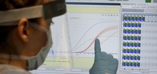 Coronavirus: un médico israelí aseguró que la propagación podría reducirse a cero luego de 70 días