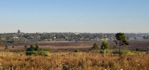 Conocé cómo se logró mitigar el dantesco incendio que quemó casi 70 hectáreas de un descampado en Posadas