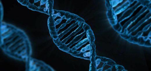 ¿Por qué se celebra hoy el Día Internacional del ADN?