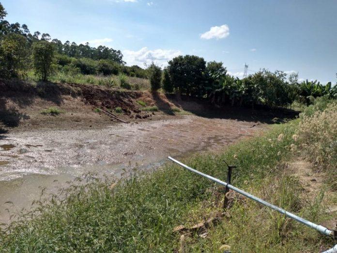 Brasil: la sequía afectó la producción agrícola y ya son 329 municipios en Río Grande do Sul que declararon una situación de emergencia hídrica