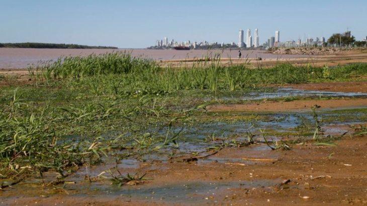 """Crisis hídrica: investigadores coinciden en que la bajante de los ríos Paraná y Uruguay se debe """"a la falta de lluvias"""" en la región"""