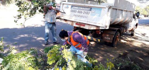 Reforzando la campaña contra el dengue, realizaron un operativo de limpieza en el Monoclínico Manantial de Posadas