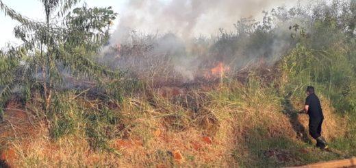 Máximo riesgo de incendios en Misiones: se desató otro incendio en un baldío de Posadas y fue sofocado por los Bomberos