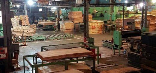 Coronavirus: por la crisis económica Coama Sud América, líder en el país en placas de compensados fenólicos, suspende todas sus actividades de producción en la fábrica de Eldorado