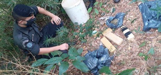 Posadas: la Policía encontró cuatro panes de marihuana ocultos en un baldío