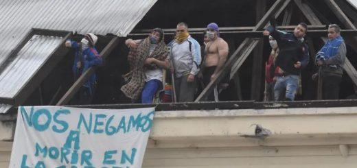 Coronavirus: según la jueza Márquez liberaron a 176 violadores en Quilmes