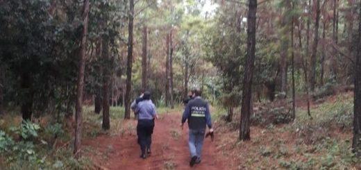 En Gobernador Roca un cazador falleció asfixiado al quedar atascado en una madriguera de tatú