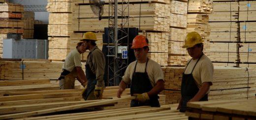 Resaltan mejoras en el sector maderero, pero afirman que el valor de la materia prima está entre los más bajos de los últimos 15 años