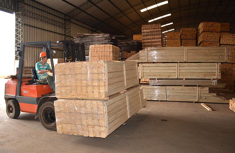 """Guillermo Fachinello, de APICOFOM: """"Para reactivar la cadena foresto-industrial y sostener el empleo, el único camino es promover el uso de la madera en la construcción sustentable"""""""