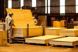 """Corrientes: """"Las exportaciones forestales están paradas casi en su totalidad, y en el mercado interno la fabricación de muebles y madera para construcción se redujo a un 90%"""""""