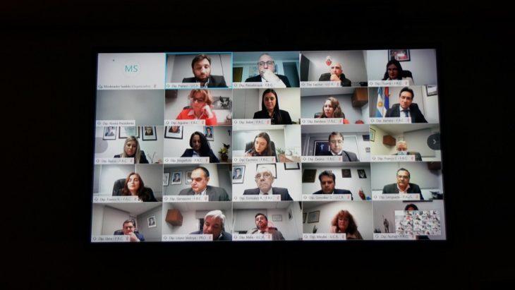 #Coronavirus: en modalidad virtual y con nueva integrante, tuvo su primera sesión ordinaria la Legislatura misionera