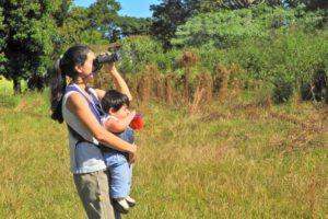 Desde Misiones, una propuesta de la red COA para despertar a la pasión por los pájaros en el Gran Día Mundial de Observación de Aves