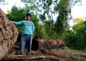 Campo Grande: Tekoa Ka'a Kupe recurrió a la Justicia para frenar desmontes de Carba SA en territorio indígena y autorizados por Ecología