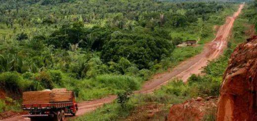 En plena cuarentena, la deforestación ilegal en la Amazonía de Brasil sube casi un 64 % en abril