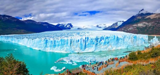 Arqueólogos encontraron un ecosistema de 65 millones de años a kilómetros del Glaciar Perito Moreno