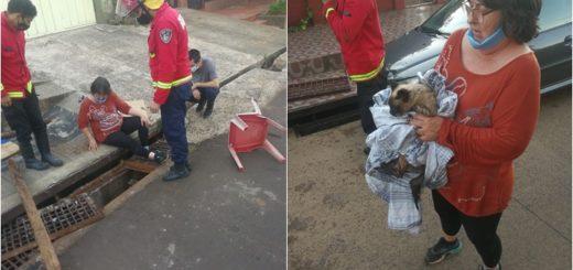 En Posadas, los bomberos rescataron a un gato que cayó y quedó atrapado en el desagüe
