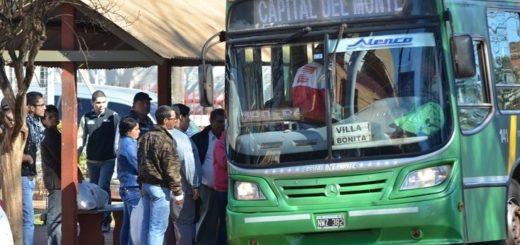 Habilitan nuevas líneas de transporte urbano en Oberá