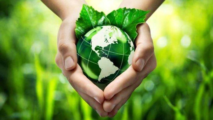 La Semana del «Laudato Si» promueve la reflexión sobre la naturaleza de manera integral y una «conversión ecológica»