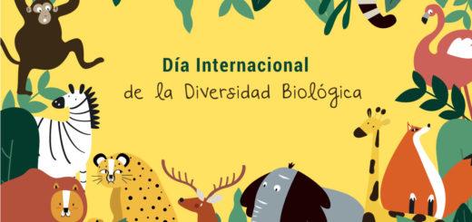 ¿Por qué se celebra hoy el Día Internacional de la Diversidad Biológica?