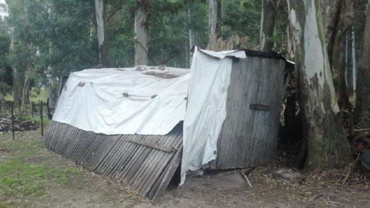 Misioneros estaban en condiciones de esclavitud en una finca de Entre Ríos propiedad de un ex funcionario de Macri