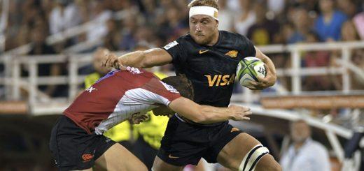 La World Rugby analiza un protocolo para evitar contagios