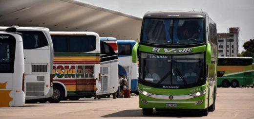 El aporte estatal de 500 millones de pesos deberá ser reintegrado por las empresas en forma de pasajes sin costo