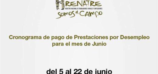 A partir del 8 de junio RENATRE atenderá de manera presencial