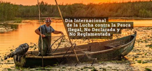 ¿Por qué se conmemora hoy el Día Internacional de la Lucha contra la Pesca Ilegal, No Declarada y No Reglamentada?
