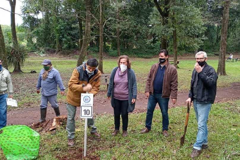 #SemanaMundialdelAmbiente: Libertad, Montecarlo y Puerto Rico se sumaron al programa provincial de arbolado urbano con especies nativas