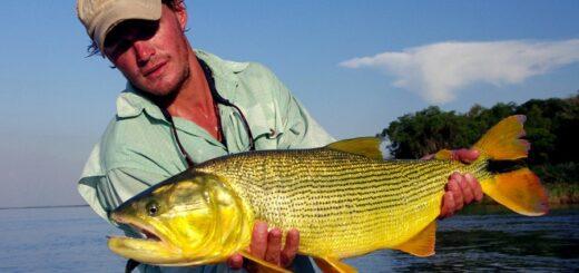 Coronavirus: Corrientes habilitó la pesca deportivay comercial
