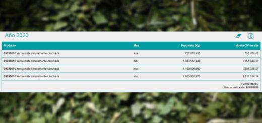 Se disparan importaciones de yerba mate canchada por escasez de materia prima en la provincia