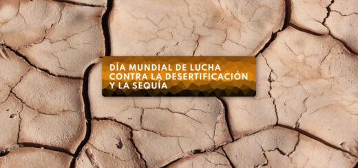 ¿Por qué se conmemora hoy el Día Mundial de Lucha contra la Desertificación y la Sequía?