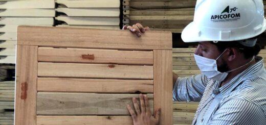 PyMEs madereras de Misiones y NE de Corrientes mejorarían su productividad con pequeños movimientos en el layout y organización, aseveró Maximiliano Conil
