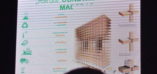 Este miércoles, dictarán un seminario virtual de acceso libre con destacados especialistas en construcción y diseño de viviendas de madera en Argentina
