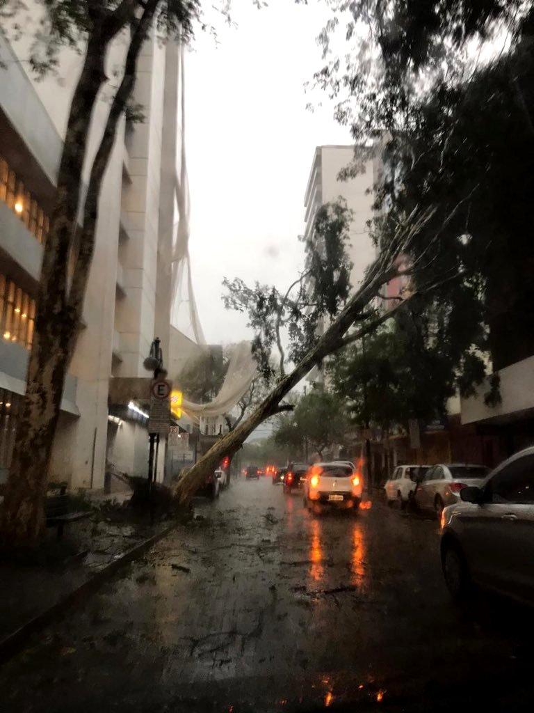 """Brasil: al menos cuatro muertos por la """"bomba ciclónica"""" que golpeó a Santa Catarina y Río Grande do Sul, mientras que hubo daños materiales en Paraná"""