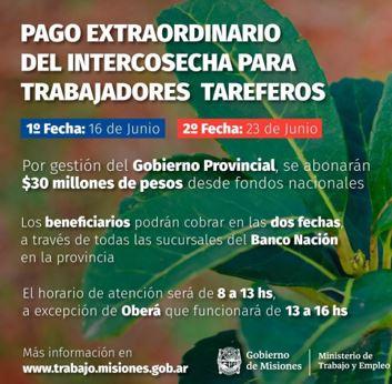 Este martes 23 de junio continúa el Pago Extraordinario del Programa Intercosecha a trabajadores tareferos