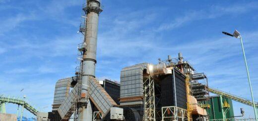 Corrientes: la mayor planta de energía a partir de biomasa forestal del país comienza a funcionar en Virasoro