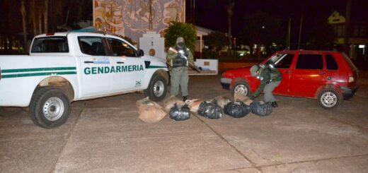 Gendarmería Nacional incautó 99 kilos de marihuana en un operativo sobre ruta 6