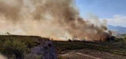 Hicieron un asado violando la cuarentena y provocaron un incendio