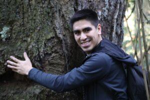 Un día es poco para valorar todo lo que nos aportan los árboles para la existencia de la vida del planeta