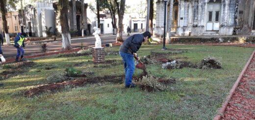 """Posadas: las visitas en el Cementerio """"La Piedad"""" en el Día del Padre serán por solo 60 minutos"""
