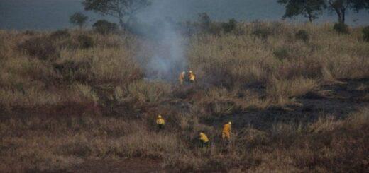 Incendios forestales: Cabandié sobrevoló el Delta del Paraná y declaró la emergencia ambiental