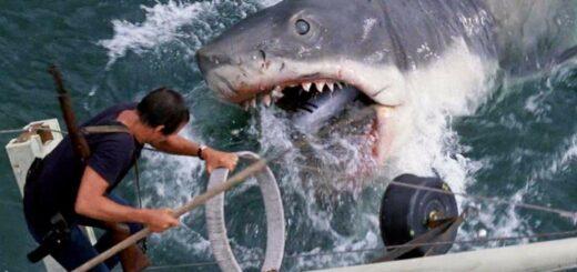 A 45 años de Tiburón: peligro de naufragio, un rodaje desastroso y animales que no funcionaban