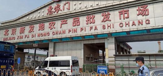 Cómo es Xinfadi, el mercado de comidas de Beijing más grande de Asia, donde hubo un rebrote de coronavirus