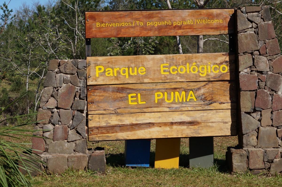 """Conocé la historia del amistoso Tucán que no puede volar y ahora vive en la reserva ecológica """"El Puma"""""""